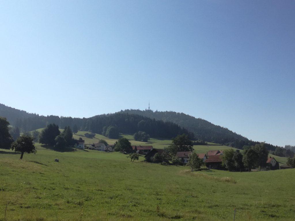 Singletrail vom Bachtel Berg